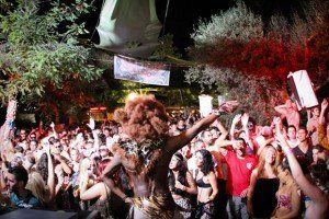 The Zoo Project let your inner animal free