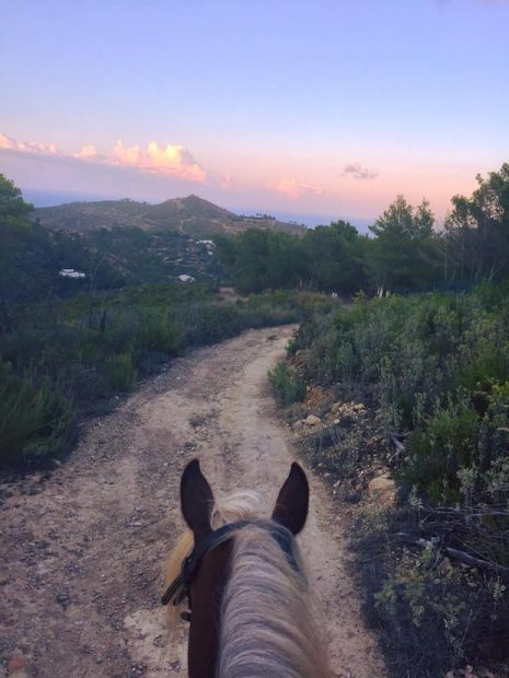 Ibiza on horseback simply stunning