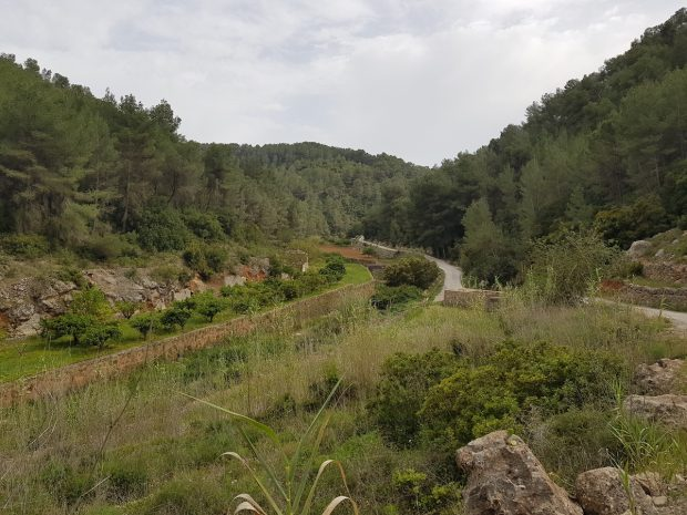 The view look down the valley of Es Broll Ibiza