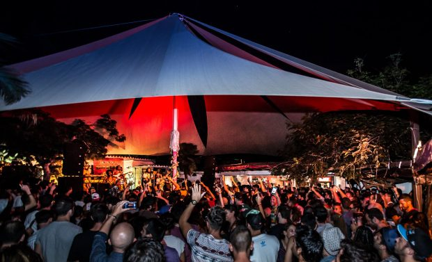 The nightlife at Las Dalias Ibiza is as diverse as the island itself