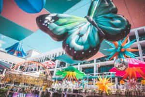 Cuckoo Land Ibiza Rocks 2020